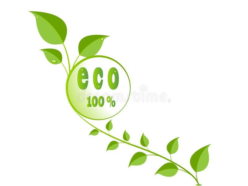 Insignia ecológica verde de las hojas ilustración del vector
