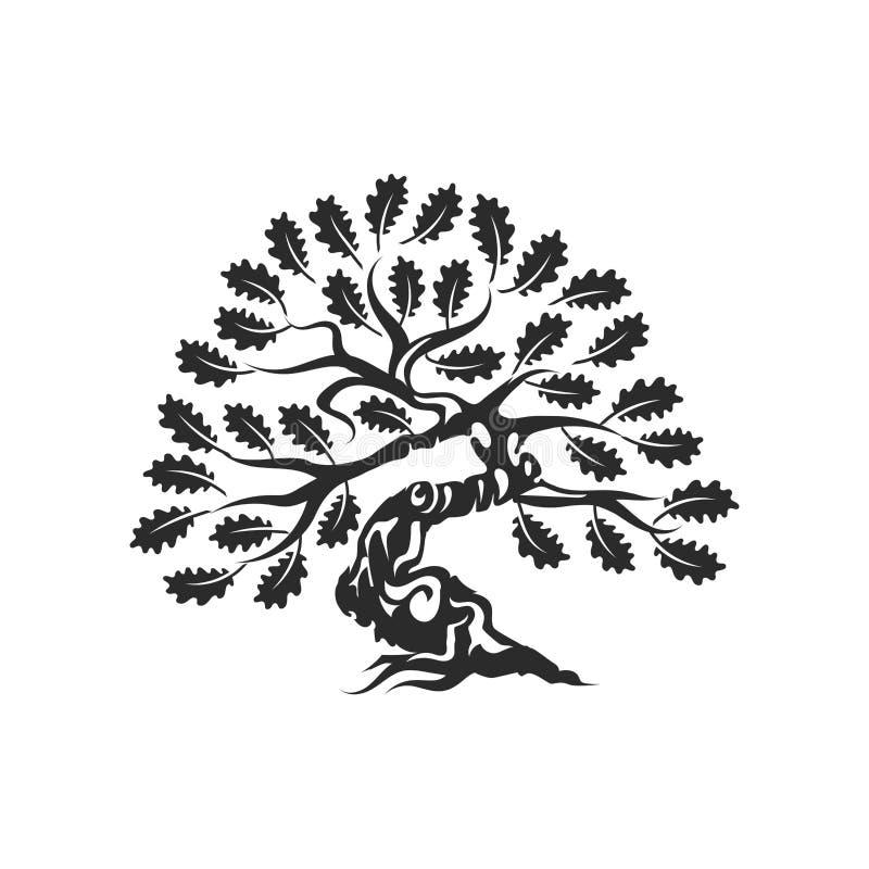 Insignia enorme y sagrada del logotipo de la silueta del roble aislada en el fondo blanco libre illustration