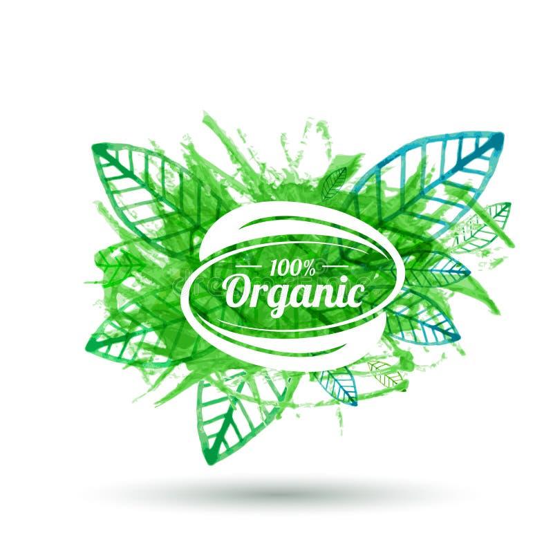 Insignia orgánica del producto en textura verde de la hoja Vector i de la acuarela libre illustration