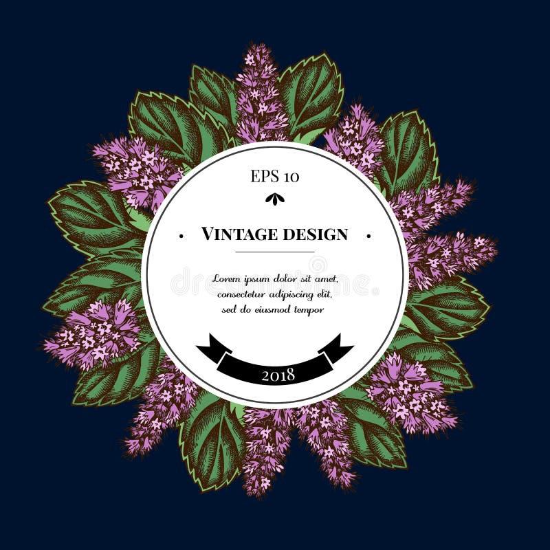Insignia sobre diseño con la hierbabuena stock de ilustración