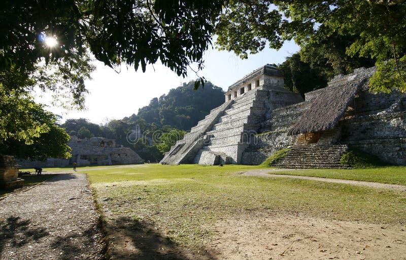 inskrifter mayan mexico fördärvar tempelet royaltyfri foto
