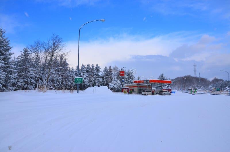 Insnöade Hokkaido fotografering för bildbyråer