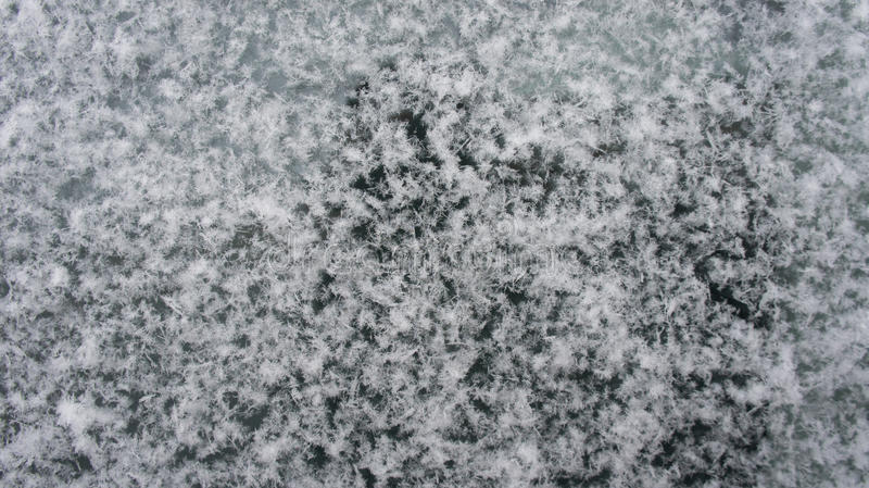 Insnöade snöflingor det automatiska exponeringsglaset royaltyfria bilder