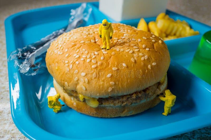 Inspección de sanidad de Hazmat del almuerzo escolar imagen de archivo libre de regalías