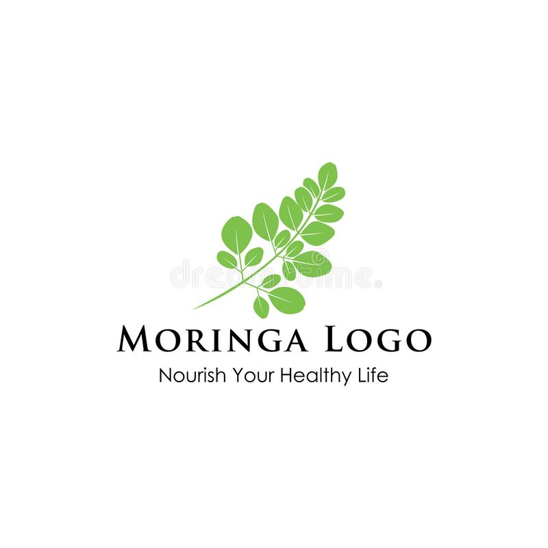 Inspiração do projeto do logotipo de Moringa - inspiração natural do logotipo da saúde - logotipo de Superfood ilustração do vetor