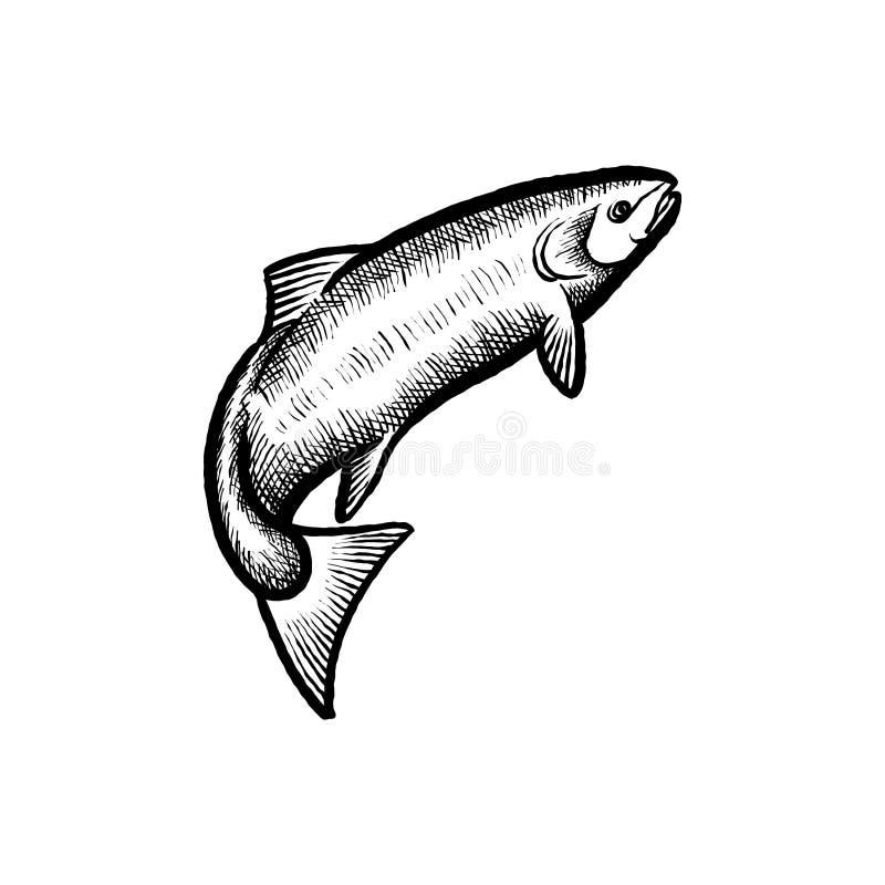 Inspiração tirada mão do vetor do logotipo dos peixes, pescando a inspiração do projeto do logotipo ilustração royalty free