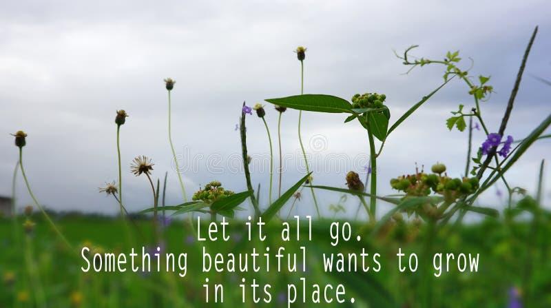 Inspiracyjna wycena - Pozwala je wszystko iść Coś piękny chce rosnąć w swój miejscu Z zielonej trawy i kwiatów tłem zdjęcia stock