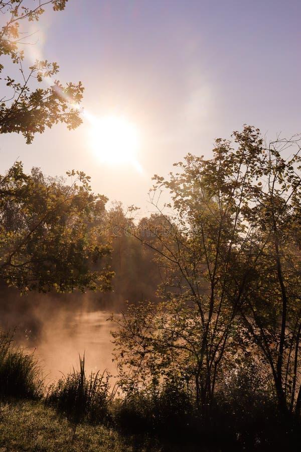 Inspiration de matin avec Sun photo libre de droits