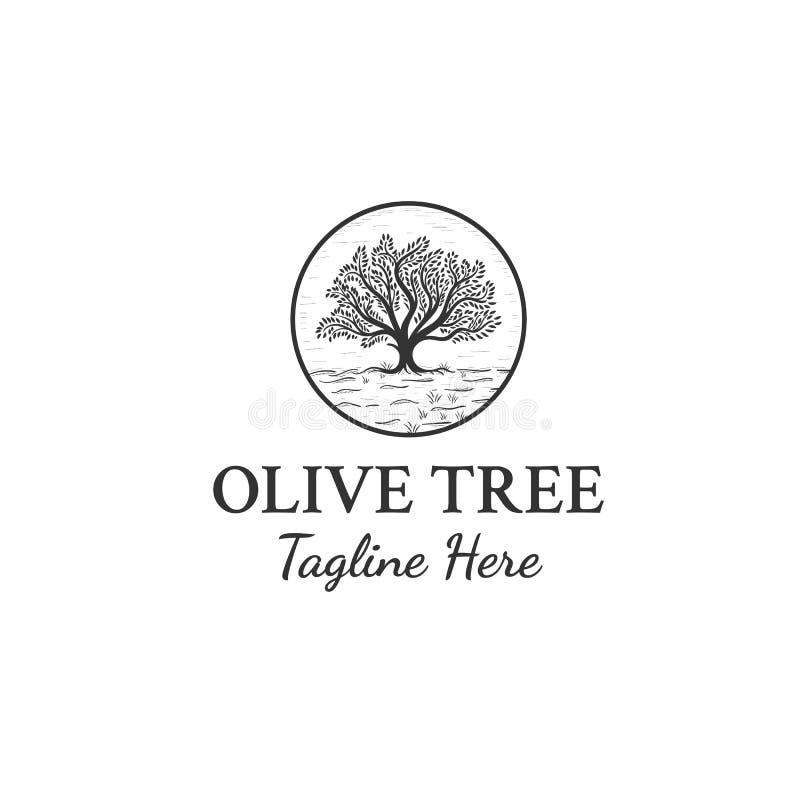 Inspiration för olivträdlogodesigner royaltyfri illustrationer