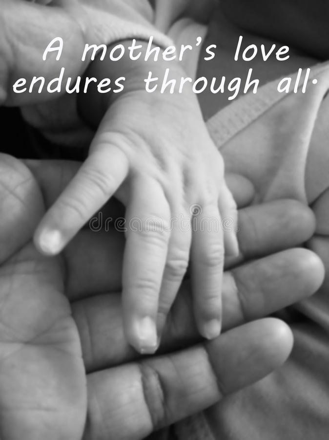 Inspirational mother quote- A mothers love endures through all. With blurry image of a fragile little baby new born hand and stock photo