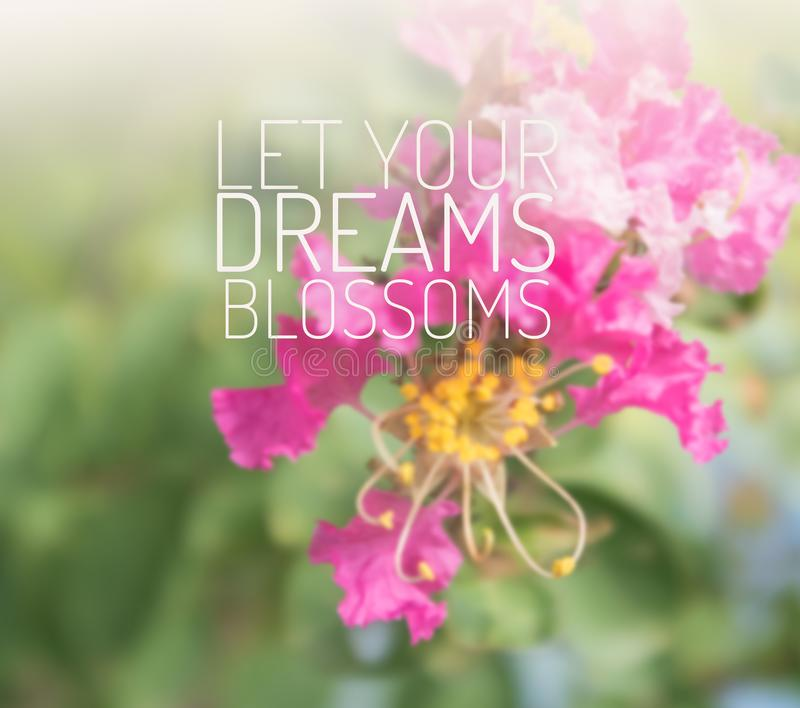 Inspirational and motivation quote on blurred flower background royalty free stock images