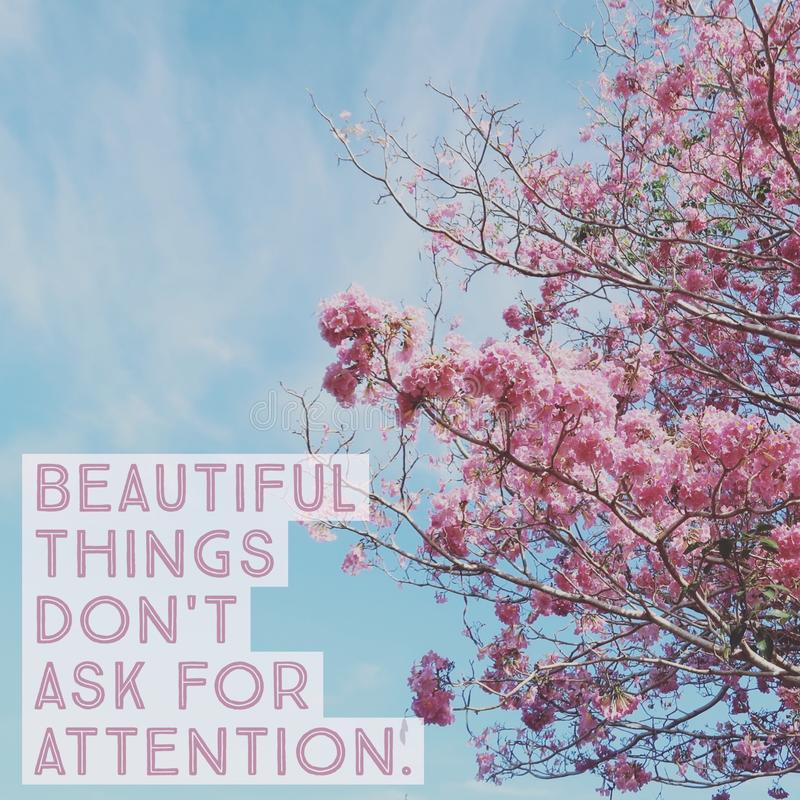 Inspirational motivational quote `beautiful things don`t ask for attention` royalty free stock photos