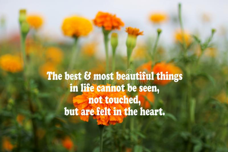 Inspirational motivational quote - The best and most beautiful things cannot be seen, not touched, but are felt in the heart. With stock image