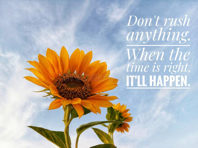 Inspirational motivational quote - Do not rush anything. When the time is right, it will happen. With sunflower blossom & sky. Inspirational motivational quote royalty free stock image