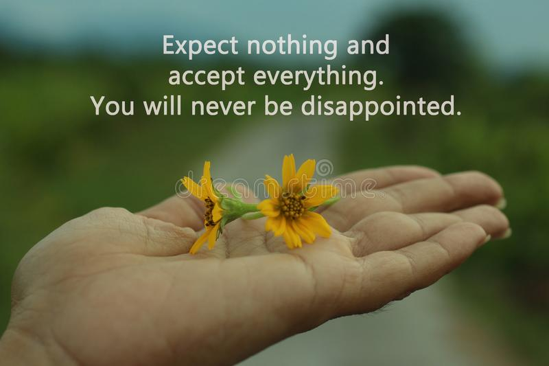 Inspirational words - Expect nothing. Appreciate anything. You will never be disappointed. With two little daisy flowers in hand. Inspirational motivational royalty free stock photos
