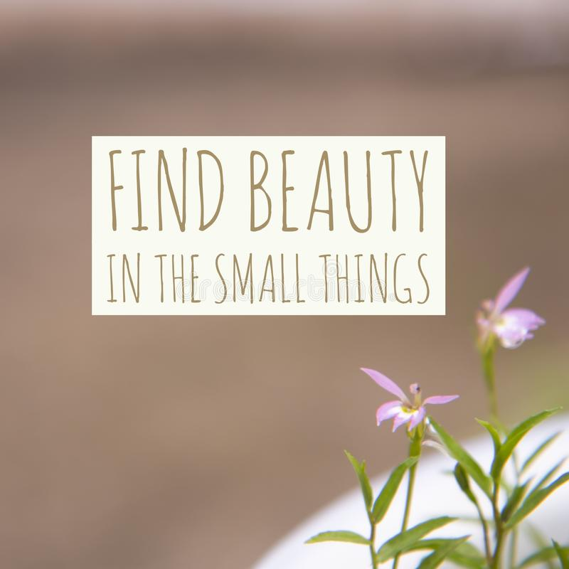 Inspirational motivational quote `Find beauty in the small things` stock photo