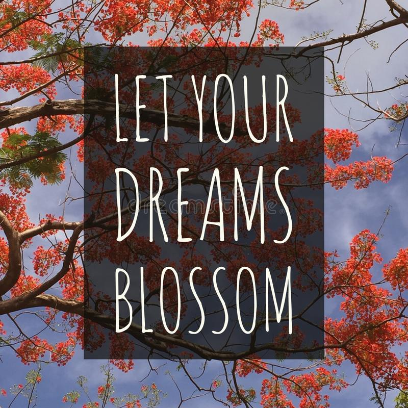 Free Inspirational Motivational Quote `Let Your Dreams Blossom.` Stock Photo - 108366120