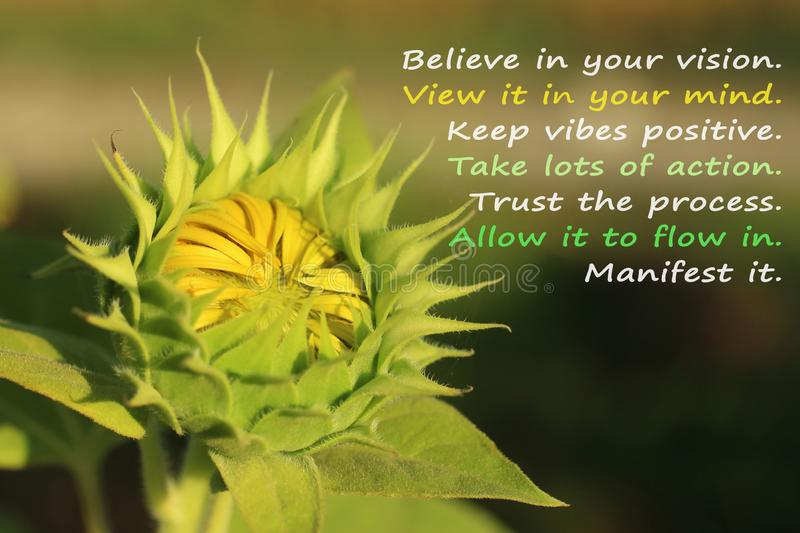 Inspirational quote- Trust the porcess, with baby young sunflower blooming as illustration. Inspirational motivational quote with nature- Believe in your vision royalty free stock photos
