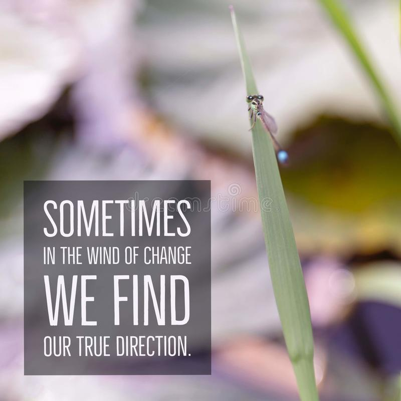 Inspirational motivational quote `Sometimes in the wind of change we find our true direction.` royalty free stock image