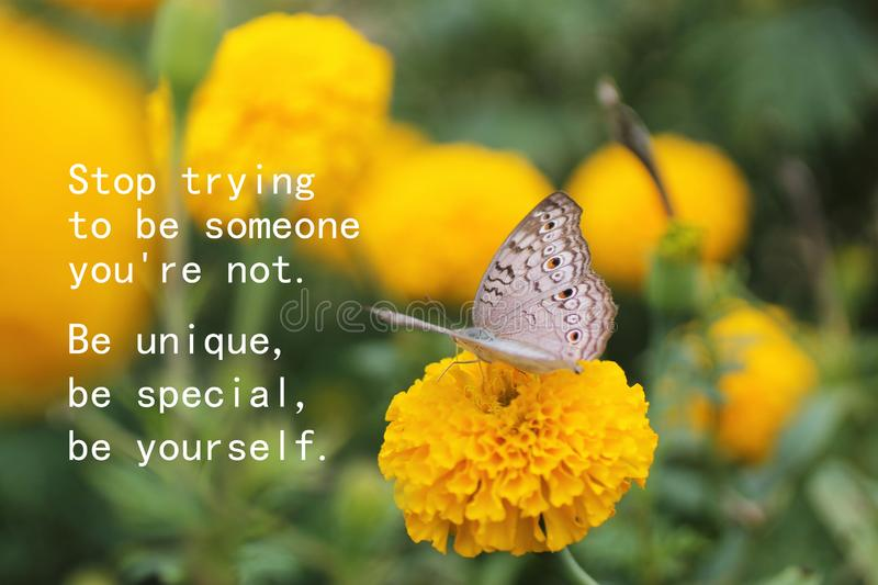 Inspirational motivational quote - Stop trying to be someone you are not. Be unique, be special, be yourself. royalty free stock photography
