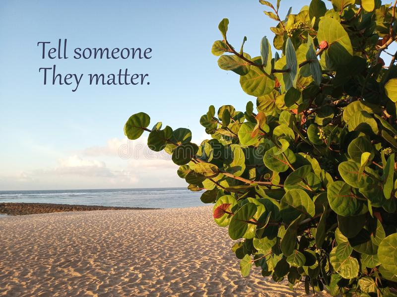 Inspirational motivational quote- Tell someone they matter. With white sandy beach under clean blue sky scenery and green plants stock photography