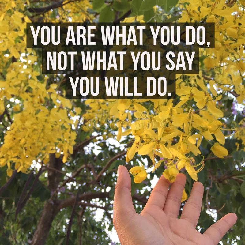 Inspirational motivational quote `You are what you do,not what you say you will do.`. On yellow flowers and hand background stock photos