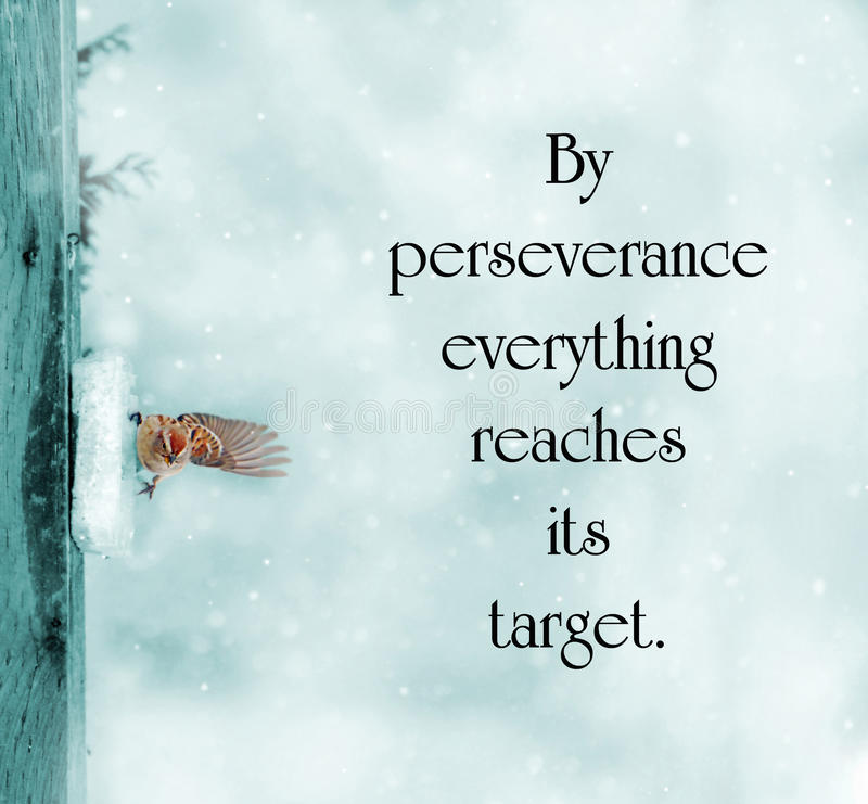 Motivational Quotes Perseverance: Inspirational Quote. Stock Photo. Image Of Lesson, Concept