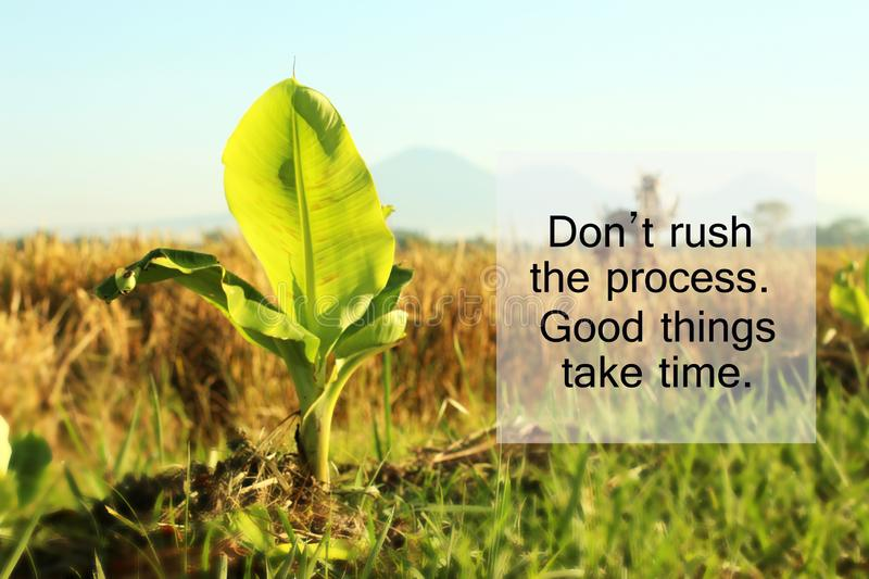 Inspirational quote - Do not rush the process. Good things take time. With baby banana tree growth in the field as illustration. royalty free stock photo