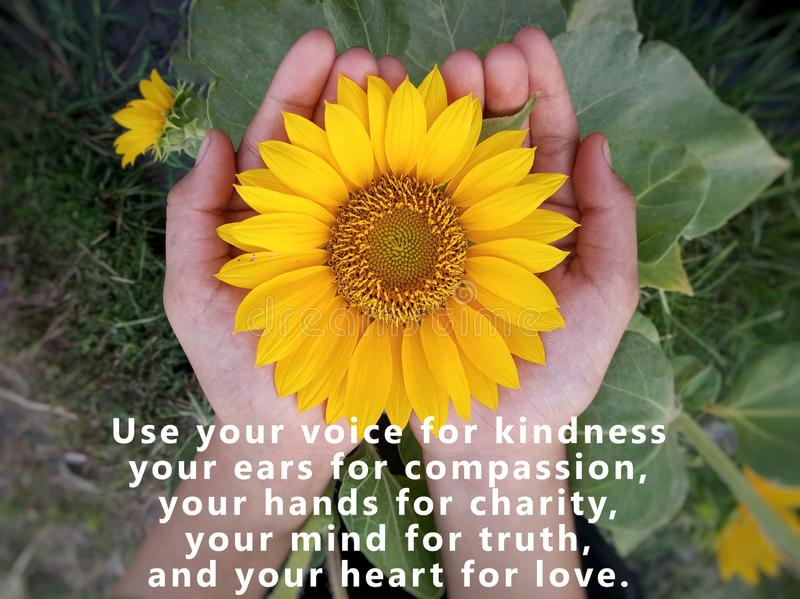 Inspirational quote - Use your voice for kindness, your ears for compassion, your hands for charity, your mind for truth. stock photos