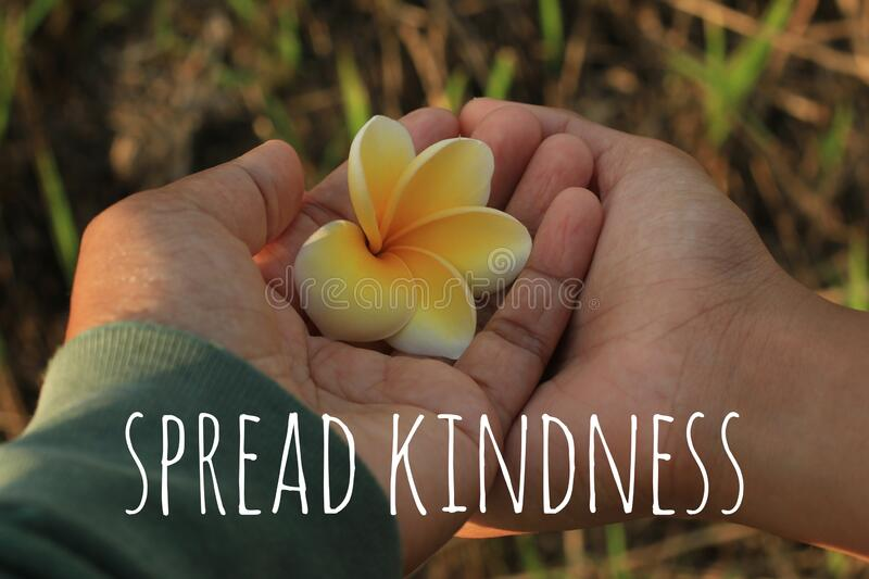 Inspirational words - Spread kindness. With yellow Bali frangipani flower in hands of mother and daughter. Parenting concept. Inspirational words - Spread stock photos