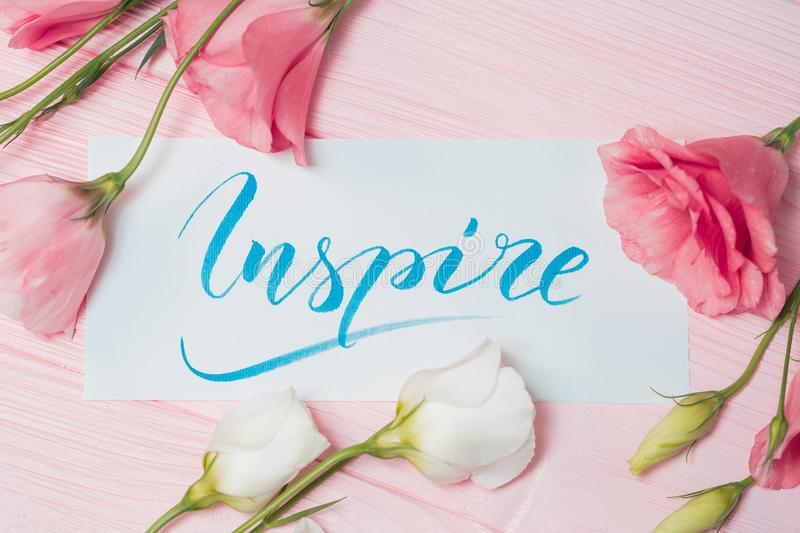 Inspire text. Font of lettering motivational word on white canvas with blue ink. Flowers eustoma frame on pink table. Background. Graphic design, handwriting royalty free stock photos