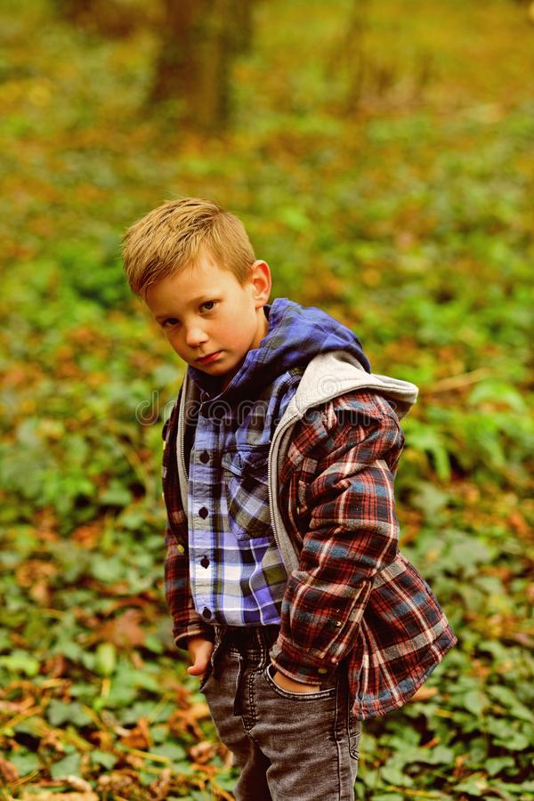 Inspired by autumn. Little boy hiking in autumn forest. Little boy enjoy autumn day. September days are here.  stock photography