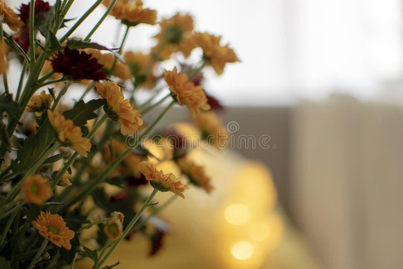 Inspirerad hem- dekor för skandinavisk höst - Closeup av morblommabuketten, hemtrevlig vardagsrum, Sofa Cushion, stucken pläd arkivfoto