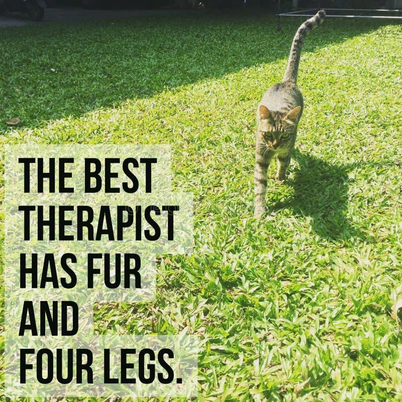 Inspirerande motivational citationstecken` den bästa terapeuten har ` för päls och för fyra ben, arkivbild