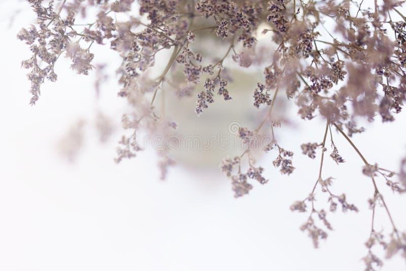 Inspirierend Motivzitat über Abenteuer auf unscharfem Blumenhintergrund lizenzfreie stockfotos