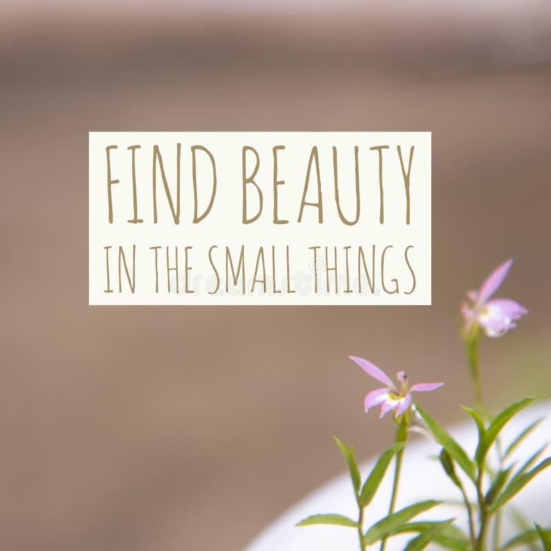 Inspirierend Motivzitat ` Entdeckungsschönheit im kleinen Sachen ` stockfoto