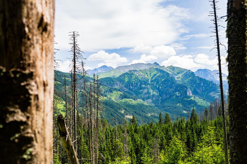 Inspiring Tatra Mountains Landscape View stock image