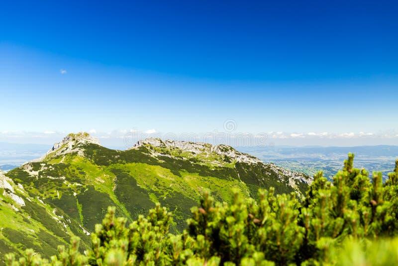 Inspirujący górę Kształtuje teren widok, lato w Tatras obraz royalty free
