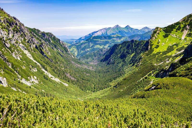 Inspirujący górę Kształtuje teren widok w Tatrzańskich górach obraz stock