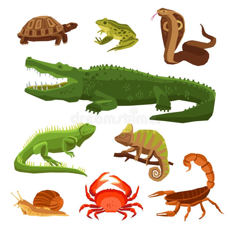 inställda amfibiereptilar royaltyfri illustrationer