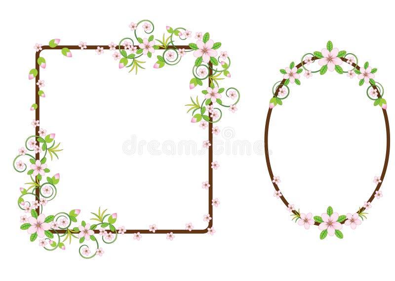inställda blom- ramar vektor illustrationer