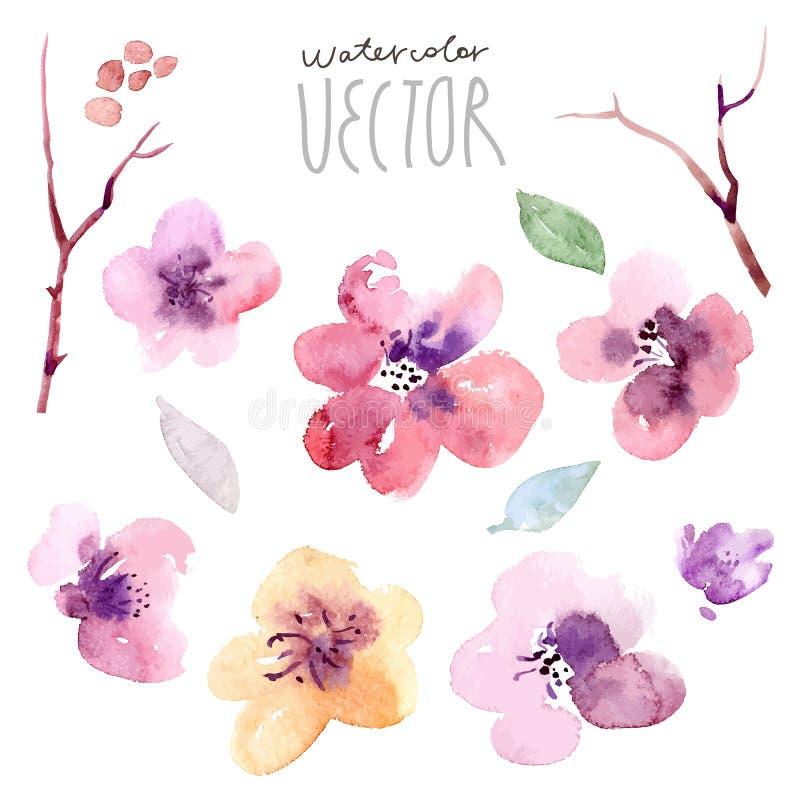 Inställda blommor vattenfärg vektor illustrationer