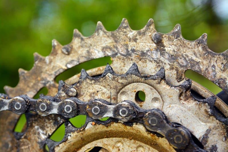 inställda kugghjul för cykelchainringscloseup royaltyfri bild