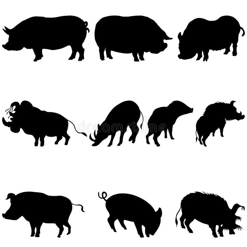 inställda silhouettes för galter pigs stock illustrationer