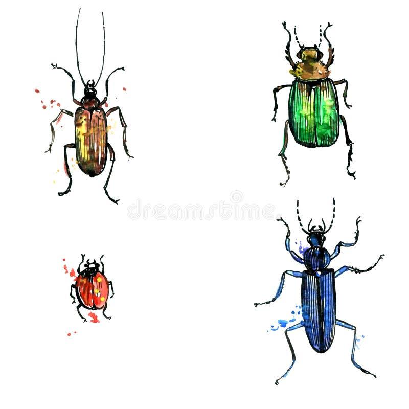 inställda skalbaggar stock illustrationer