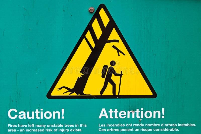 Instabile Bäume einer Vorsicht im Bereichszeichen stockfotos