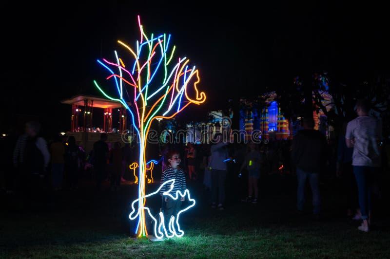 A instalação de néon da arte do parque do cão na noite branca Geelong em Austrália imagens de stock