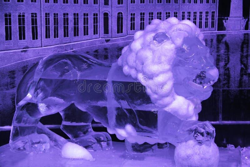 A instalação do gelo do leão animal foto de stock royalty free