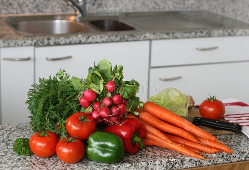 Instalação dos vegetais fotos de stock royalty free