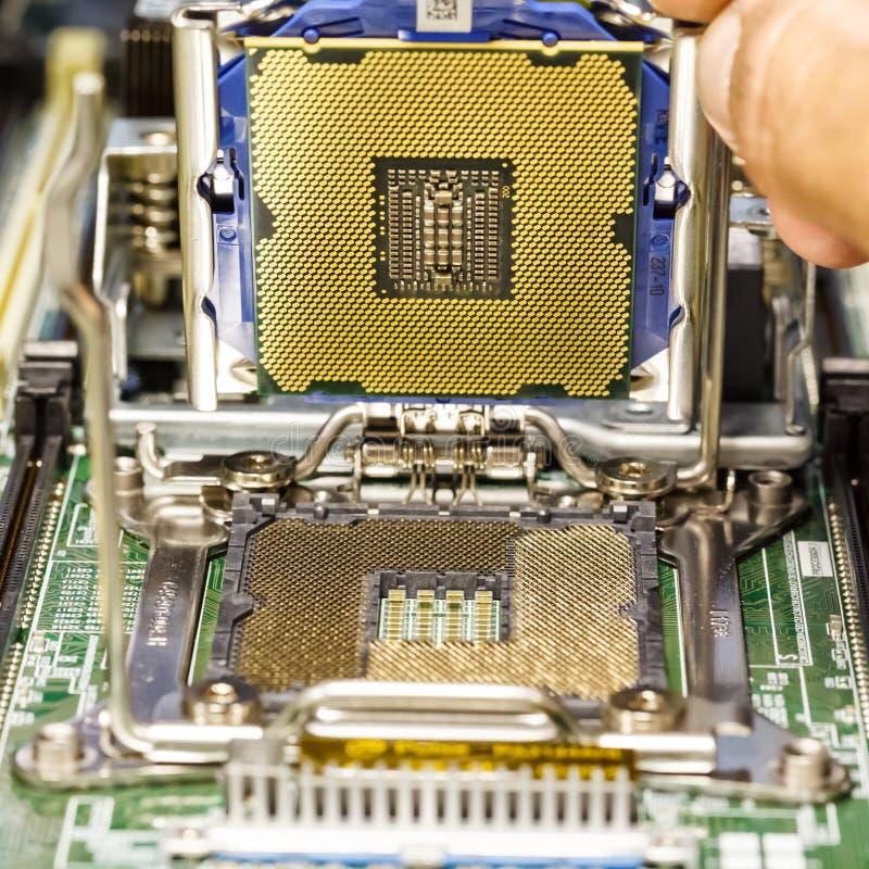 Instalando o processador no close up do cartão-matriz do servidor imagens de stock